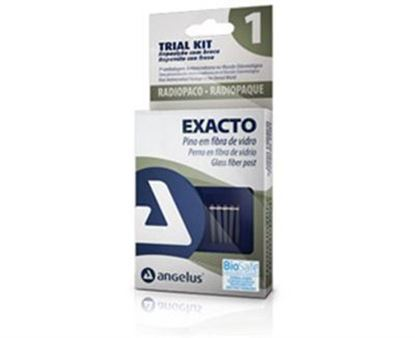 Picture of Angelus Exacto Trial Pack