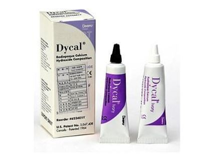 Picture of Dentsply Dycal Radiopaque Calcium Hydroxide Composition
